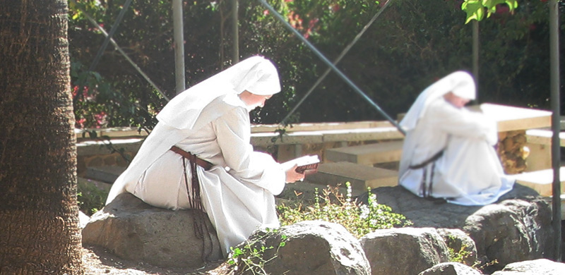 Points of Meditation by Sr. Clare